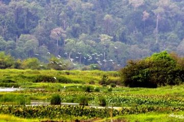 Vietnam Eco Tour