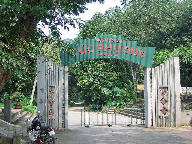 Day 2: Hanoi – Cuc Phuong National Park (B/L)