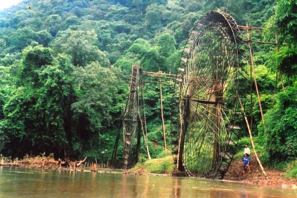 Day 4: Cuc Phuong National Park - Hanoi (B)