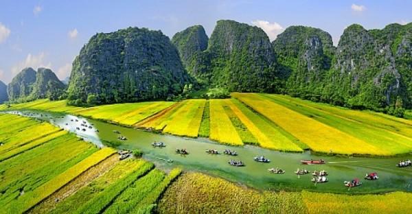 Day 6: Hoa Lu - Tam Coc - Hanoi (B/L)