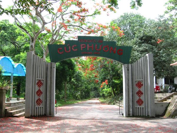 Day 15: Tam Dao - Cuc Phuong National Park (B)
